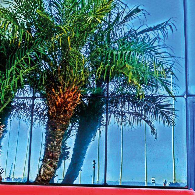 Palme mit Leuchtturm, Palais des Festivals et des Congrès, Boulevard de la Croisette, Cannes
