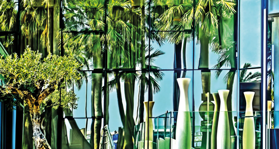 Spiegelung mit Palmen, Cannes