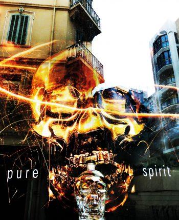 Pure Spirit, Spiegelung, Cannes